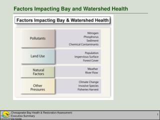 Factors Impacting Bay and Watershed Health
