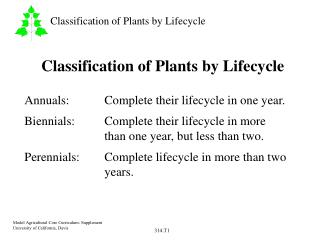 Classification of Plants by Lifecycle