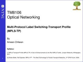 TM8106 Optical Networking