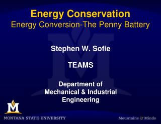Energy Conservation Energy Conversion-The Penny Battery