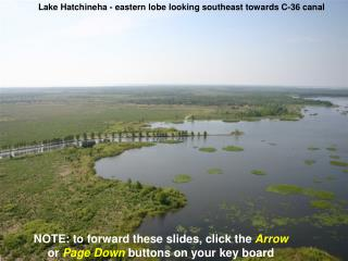 Lake Hatchineha - eastern lobe looking southeast towards C-36 canal