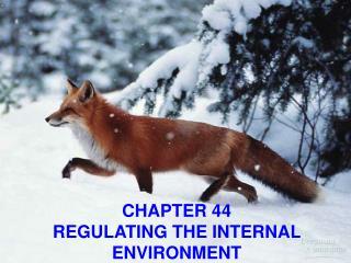CHAPTER 44 REGULATING THE INTERNAL ENVIRONMENT