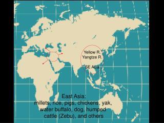 Yellow R. Yangtze R. SE Asia