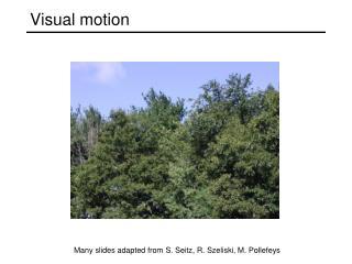Visual motion