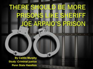 There should be more prisons like  Sheriff J oe  Arpaio's  prison