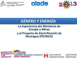 La Experiencia del Ministerio de Energía y Minas