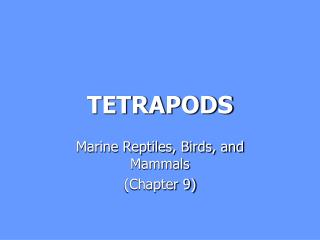 TETRAPODS