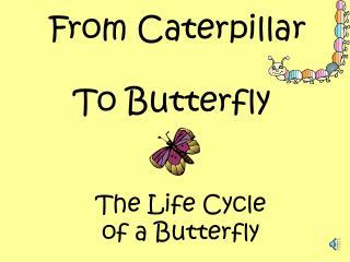 From Caterpillar
