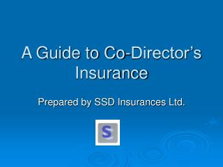 A Guide to Co-Director's Insurance