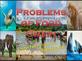 Problems of  Food Chain