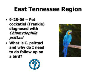 East Tennessee Region