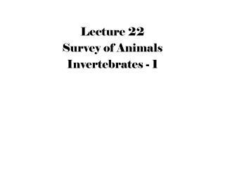 Lecture 22 Survey of Animals Invertebrates - 1