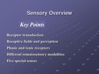 Sensory Overview