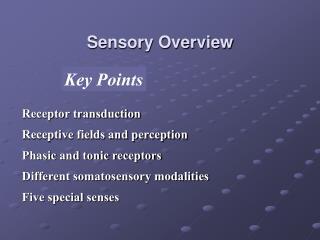 Sensory Overview