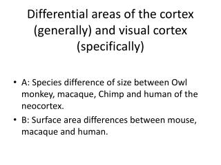 Differential areas of the cortex (generally) and visual cortex (specifically)
