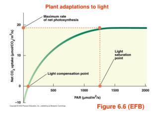 Figure 6.6 (EFB)