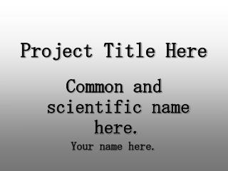 Project Title Here
