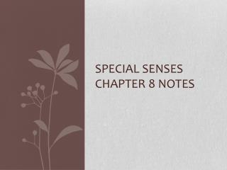 Special Senses Chapter 8 Notes
