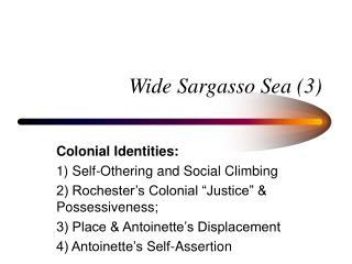 Wide Sargasso Sea 3