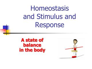 Homeostasis  and Stimulus and Response