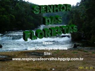 Texto: Luiz Gonzaga da Silva Site: respingosdeorvalho.hpgvip.br