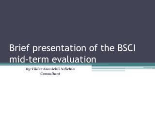 Brief presentation of the BSCI mid-term evaluation