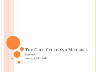 The Cell Cycle and Mitosis 2
