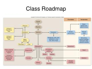 Class Roadmap