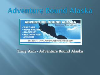 Adventure Bound Alaska