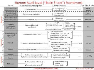 "Human Multi-level (""Brain Stack"") Framework"