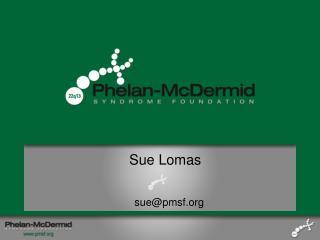 Sue Lomas
