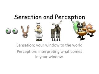 Sensation and Perception