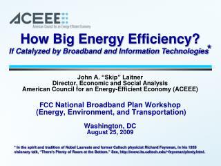 How Big Energy Efficiency?