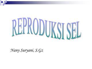 Nany Suryani, S.Gz