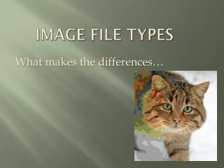 Image File Types