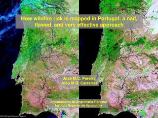How wildfire risk is mapped in Portugal: a naïf, flawed, and very effective approach