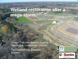 Wetland restoration after a mega-storm