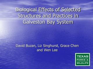 Biological Effects of Selected Structures and Practices in Galveston Bay System