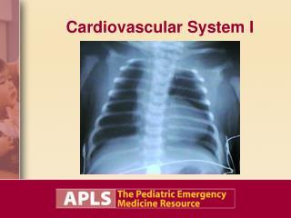 Cardiovascular System I