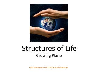Structures of Life Growing Plants