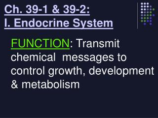 Ch. 39-1 & 39-2:  I. Endocrine System