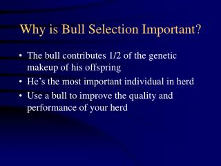 Why is Bull Selection Important?