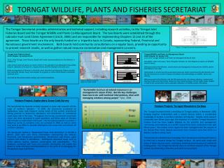 TORNGAT WILDLIFE, PLANTS AND FISHERIES SECRETARIAT