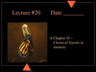Lecture #20		Date _______