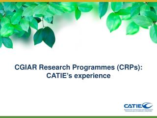 CGIAR Research Programmes (CRPs): CATIE's experience