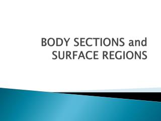BODY SECTIONS and SURFACE REGIONS