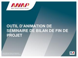 OUTIL  D'ANIMATION DE SÉMINAIRE DE BILAN DE FIN DE PROJET