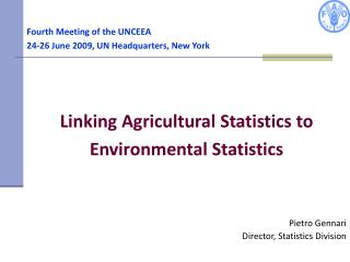 Fourth Meeting of the UNCEEA 24-26  June 2009, UN Headquarters, New York