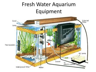 Fresh Water Aquarium Equipment