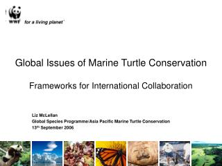 Global Issues of Marine Turtle Conservation Frameworks for International Collaboration
